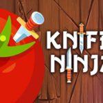 Knife Shadow Ninja